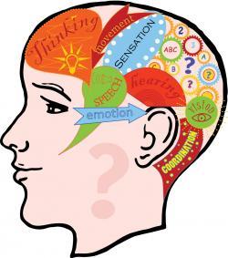 Reflection clipart intelligence