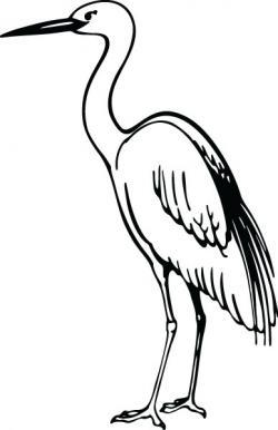 Crane clipart crane bird