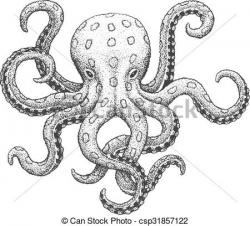 Engraving clipart octopus