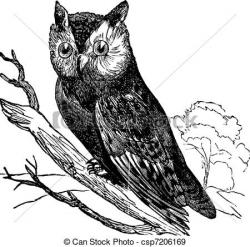 Engraving clipart owl
