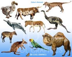 Giraffe clipart extinct animal
