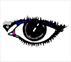 Eyeball clipart sense organ
