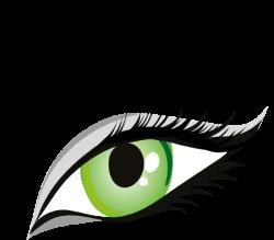 Hazel Eyes clipart sight