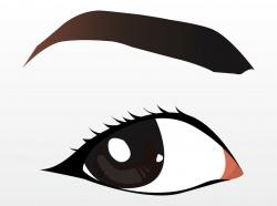 Eyeball clipart eyebrow