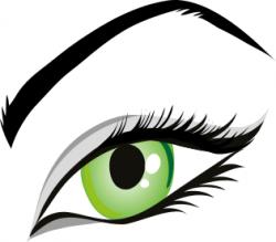 Eyelash clipart eyebrow