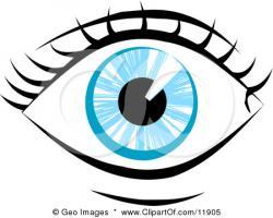 Eyelash clipart human eye