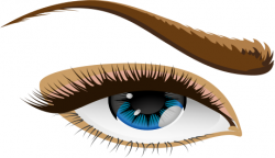 Photos clipart eyebrow