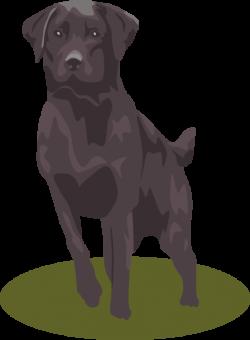 Labrador Retriever clipart lab dog