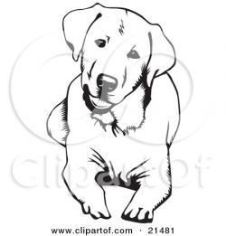 Labrador Retriever clipart drawing