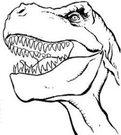 Teeth clipart t rex