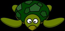 Sad clipart tortoise