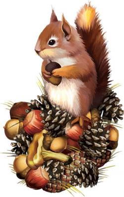 Chipmunk clipart brown squirrel