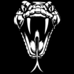Viper clipart snake head