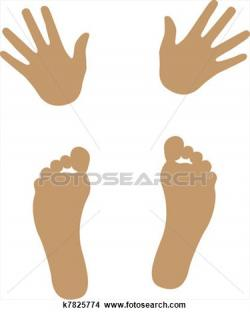 Feet clipart hand foot
