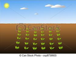 Farmland clipart crop field