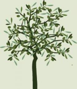 Olive Oil clipart tree