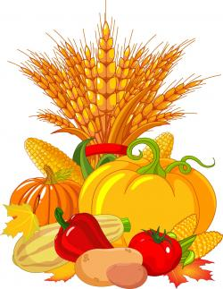 Vegetable clipart autumn harvest