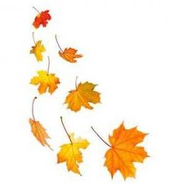 Harvest clipart leaves