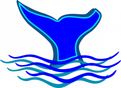 Sharkwhale clipart blue whale