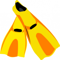 Flippers clipart swimming