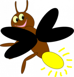 Firefly clipart insect
