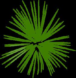 Fireworks clipart green firework