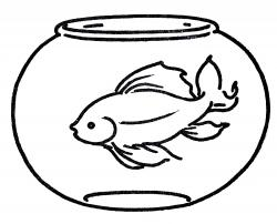 Drawn fish goldfish bowl