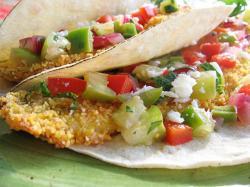 Fish Taco clipart tortilla