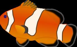Clownfish clipart small fish