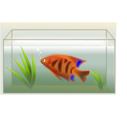Fish Tank clipart rectangle objects