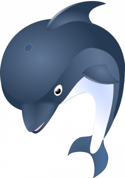 Dolphines clipart smart