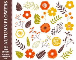Floral clipart autumn flower