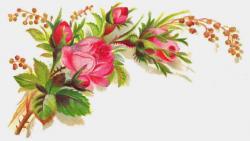Vintage Flower clipart flower bunch