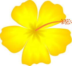 Buttercup clipart hawaiian flower