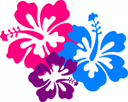 Frangipani clipart hibiscus flower