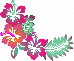 Polynesia clipart hawaiian hibiscus