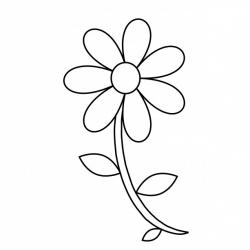 Daffodil clipart outline