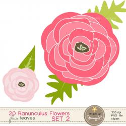 Ranuncula clipart flower leaves