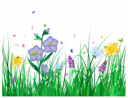 Floral clipart transparent background