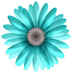 Daisy clipart turquoise