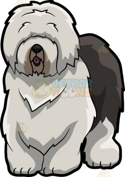 Old English Sheepdog clipart cartoon
