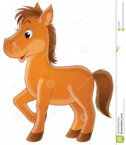 Foal clipart