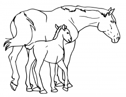 Mare clipart Foal Clipart