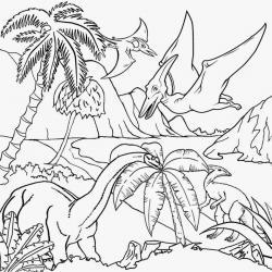 Pteranodon clipart black and white