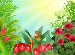 Tropics clipart tropical forest