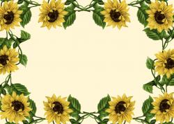 Wallpaper clipart sunflower