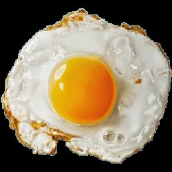 Fried Egg clipart splattered