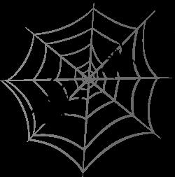 Drawn spider web whiteboard
