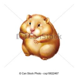 Hamster clipart fuzzy