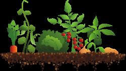 Soil clipart border